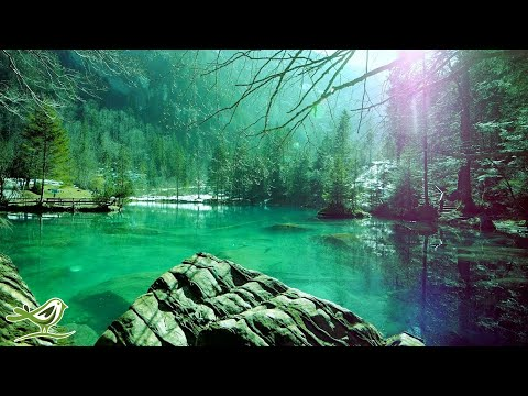 Relaxing Sleep Music: Deep Sle …