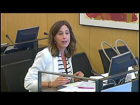 Intervención de Rosa Romero en el Grupo de Trabajo Políticas Sociales y Sistema de Cuidados