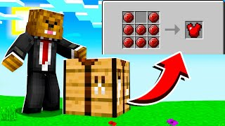 Making The ULTIMATE Ruby Armor In Minecraft CRAZYCRAFT