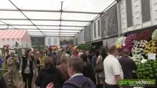 #1233 Chelsea 2013 - die grosse Ausstellungshalle