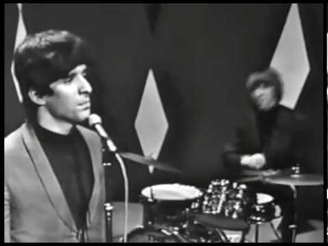 The Beau Brummels - Laugh Laugh (Shindig)