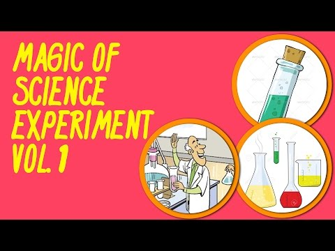 Fun N Learn Series 2 | Magic of Science Experiment Vol 1 (In English)
