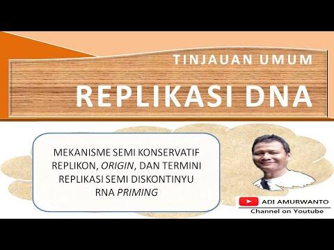 TINJAUAN UMUM REPLIKASI DNA | REPLIKASI DNA PART 1 | BELAJAR BIOLOGI MOLEKULER