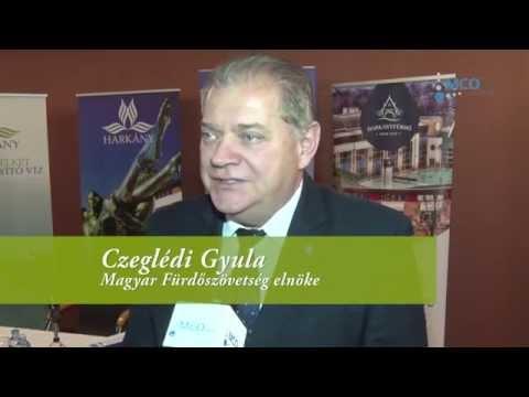 Interjú Harkányban, a Magyar Fürdőszövetség 2015. őszi közgyűlésén
