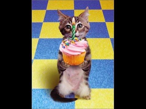 Frases de cumpleaños - Feliz Cumpleaños Frases y mensajes -  TARJETAS DE FELIZ CUMPLEAÑOS GRATIS