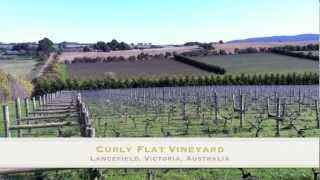 Lancefield Australia  city photo : Curly Flat Wines Vineyard (Lancefield, Victoria, Australia)