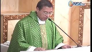 El Evangelio comentado 11-11-2018