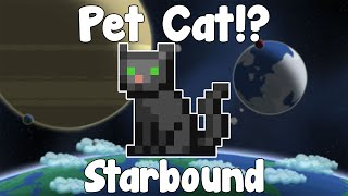 Hello everyone and welcome to a first look at the pets in Starbound! After a far too long time I've finally found myself some cat pets...