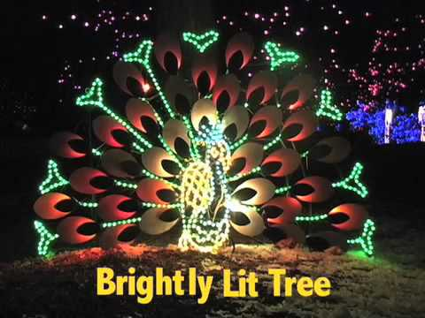 video:The 12 Nights of Zoo Lights