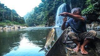 Video Nelayan pedalaman Aceh sangat tangguh di sungai besar | tangkap ikan dengan umpan buah sawit, part 1 MP3, 3GP, MP4, WEBM, AVI, FLV Mei 2019