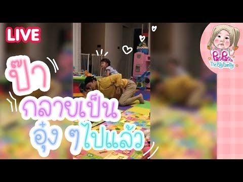 Live GG ป๊าเป็นแมวน้ำเล่นลูกบอลกับเป่าเปา l Pao Pao And The Big Family