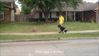Annie - Poodle Dog Training - Heeling Off Leash And Place