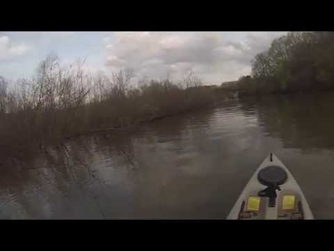 Bluegill Fishing with the Strike King Bitsy Minnow
