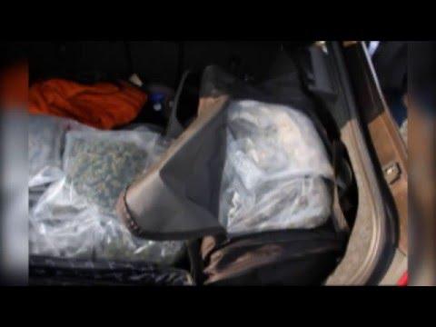 Narkotykowy magazyn na Chełmińskim Przedmieściu. Aż 25 kg marihuany o wartości 750 tys. zł!