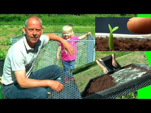 Hochbeet aufbauen und befüllen im Garten
