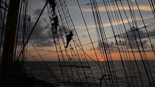 Swabs at sea