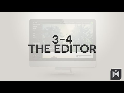 The Editor  in WordPress