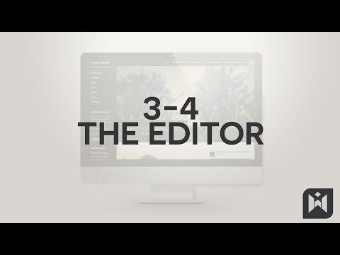 The Editor  in WordPress