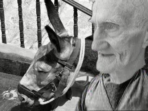 Zio Peppe – La ciuccia che cacava dalle orecchie