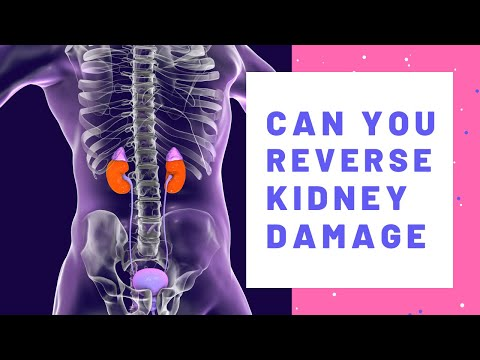 Can You Reverse Kidney Disease? How I Improved My Kidney Function