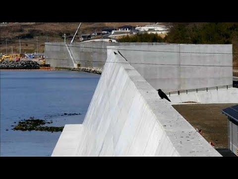 7 Jahre nach Fukushima: Tepcos