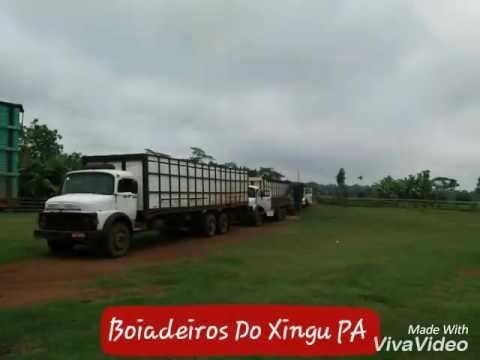 Boiadeiros de São Félix do Xingu
