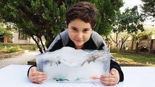 Video Dev Buz Kütlesinden Donmuş Dinozorları Çıkarıyoruz MP3, 3GP, MP4, WEBM, AVI, FLV Desember 2017