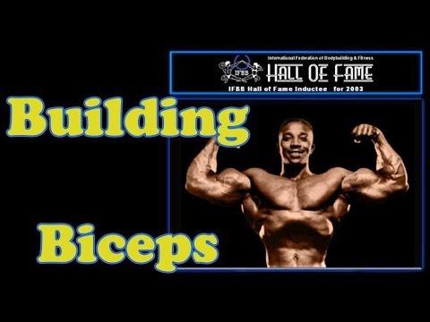 Building Big Biceps – Bodybuilding Tips To Get Big