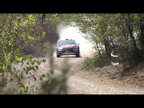 Rally Turkey 2010 WRC HD