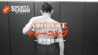 【Athlete トレーニング】肩甲骨の可動域と連動を高める体操②【菊野克紀】