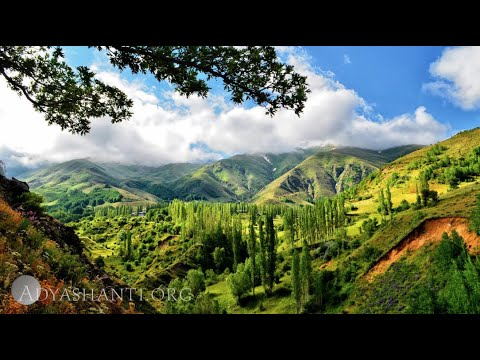 Adyashanti Guided Meditation: Meditation Is Already Happening