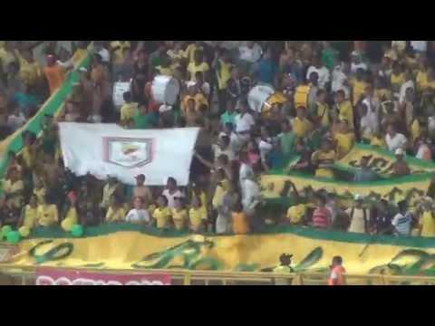 Rebelio Auriverde Norte - Frente femenino RAVN - Rebelión Auriverde Norte - Real Cartagena