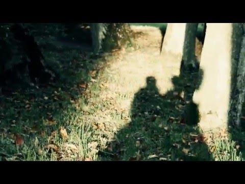 Tekst piosenki Mikromusic - Jesień po polsku
