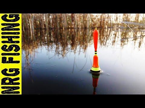 поплавочная ловля в октябре видео