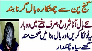 BEAUTY TIPS IN URDU/HAIR FALL SOLUTION TIPS GANJPAN TREATMENT BY HOME REMEDIES Take the white of one egg and mix in a teaspoon of olive oil. Beat to give a p...
