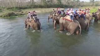 Nepal – Fotosafari na słoniach