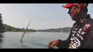 KVD - how to fish a spinnerbait