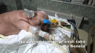 Operace hydrocefalu - fenka Izzie