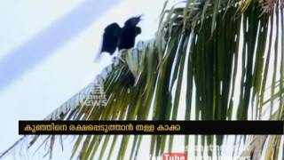 Camera Man: Shijo George Click Here To Free Subscribe! ► http://goo.gl/Y4yRZGWebsite ► http://www.asianetnews.tvFacebook ► https://www.facebook.com/AsianetNewsTwitter ► https://twitter.com/asianetnewstvPinterest ► http://www.pinterest.com/asianetnewsVine ► https://www.vine.co/Asianet.News