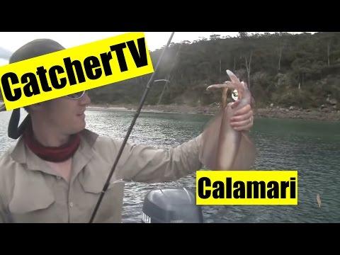 catch cook southern calamari king crabbing in northern norway