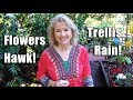 Garden Workday | Beautification | Flowers, Trellis, Hawk, Tankless Water HeaterGarden Workday | Beautification | Flowers, Trellis, Hawk, Tankless Water Heater<media:title />