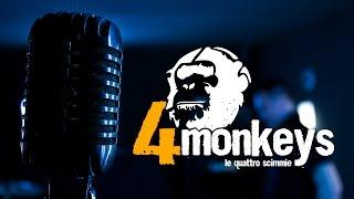 video Fermo 4Monkeys
