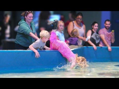 Girl Falls Into Aquarium_Akvárium. Legeslegjobbak