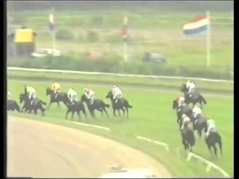 Volfonic derby winner 2001- Zafonic (European champ.) x Baiser Vole (European champ.)Conny van Heeckeren van Kell