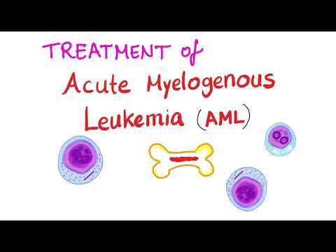 Treatment of Acute Myeloid Leukemia (AML)