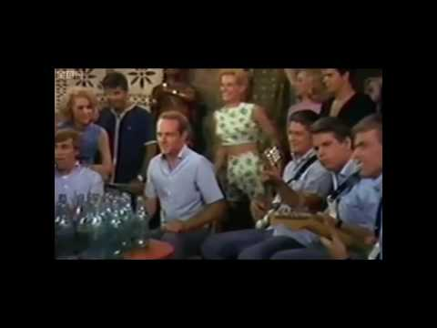 Doc - Dennis Wilson: The Real Beach Boy