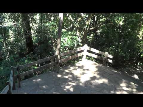 Gruta da Itapuca # (Anta Gorda-RS ) Escadaria de açesso !