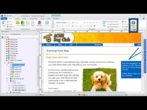 Publishing to ReviewLink with Lectora V11 e-Learning Software