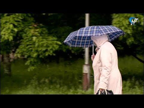 Медики и метеорологи прокомментировали погоду в Новгородской области