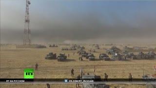 За шаг до гуманитарной катастрофы: чем могут обернуться действия Запада в иракском Мосуле